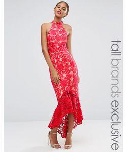 Jarlo Tall | Кружевное Платье Миди С Рюшами По Низу