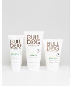 Bulldog | Набор Средств По Уходу За Кожей One Off Bundle