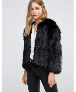 Jayley | Черная Меховая Куртка Luxurious