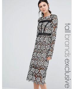 True Decadence Tall | Кружевное Платье Миди С Оборкой На Подоле