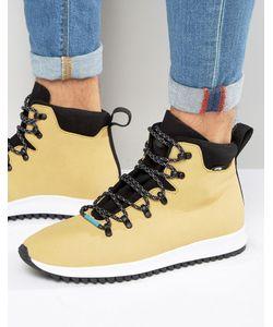 Native | Ботинки На Шнуровке Ap Apex