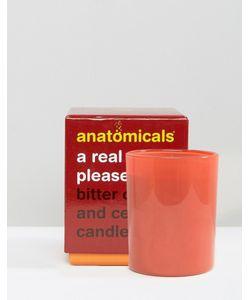 Anatomicals | A Real Wick Pleaser Свеча С Ароматом Померанца И