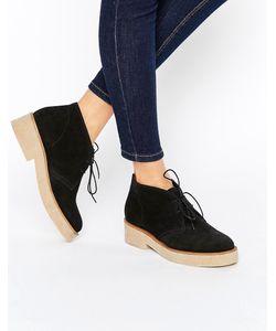 Asos | Замшевые Ботинки На Шнуровке Alva