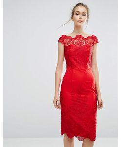 Chi Chi London | Платье-Футляр С Кружевом И Широким Вырезом