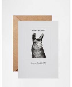 Pigment | Открытка На День Рождения No Cause For A Llama