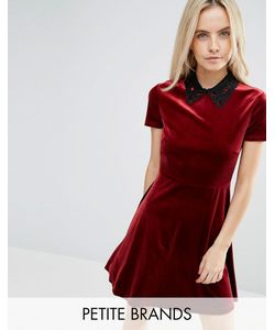 Miss Selfridge Petite | Collar Detail Velvet Dress