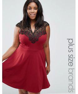 AX Paris | Короткое Приталенное Платье С Кружевом Plus