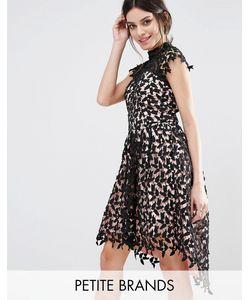 Chi Chi Petite   Кружевное Платье Для Выпускного С Асимметричным Краем Chi Chi London Petite