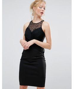 Little Mistress | Облегающее Платье Миди С Отделкой