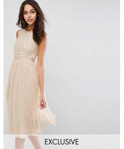 Needle & Thread | Платье Миди Из Тюля С Вышивкой Prarie