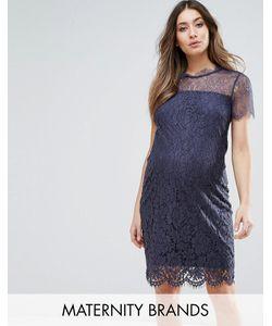 Mama Licious | Кружевное Облегающее Платье
