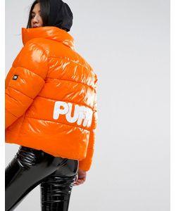 Puffa | Оверсайз-Куртка С Логотипом На Спине Original