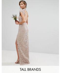 TFNC Tall | Кружевное Платье С Высокой Горловиной И Коротким Рукавом Wedding