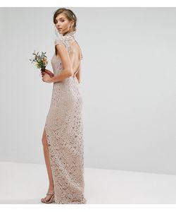 TFNC Tall   Кружевное Платье С Высокой Горловиной И Коротким Рукавом Wedding