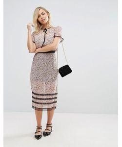 Fashion Union | Прозрачная Юбка Миди С Цветочным Принтом