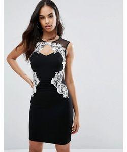 Lipsy | Облегающее Платье С Кружевной Отделкой Michelle Keegan Loves