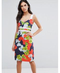 Vesper | Платье-Футляр С Контрастными Вставками На Талии И Цветочным Принтом
