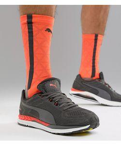 Купить Красные мужские кроссовки Puma   Stylemi eef26ee5578