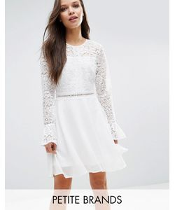 Boohoo Petite | Lace Top Fluted Sleeve Skater Dress