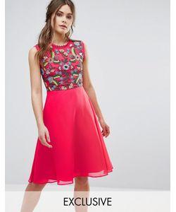 Frock and Frill | Приталенное Платье 2 В 1 С Вышивкой