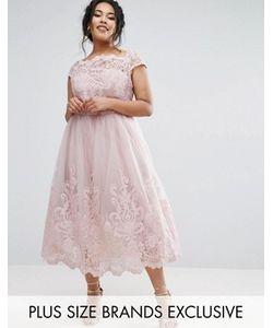 Chi Chi Plus | Кружевное Платье С Юбкой Из Тюля Chi Chi London Plus Premium
