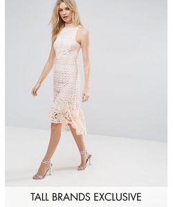 True Decadence Tall | Платье Миди Из Кружева Премиум-Класса С Высоким Воротом