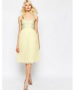 Needle & Thread | Тюлевое Платье С Отделкой Coppelia