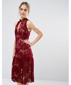 Endless Rose | Кружевное Платье С Вырезом-Капелькой И Оборками По Краю
