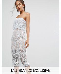 Jarlo Tall | Кружевное Платье-Футляр Бандо
