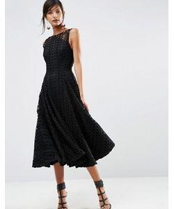 Asos | Черное Кружевное Платье Миди Для Выпускного Salon