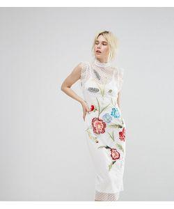 Hope and Ivy | Платье Миди С Вышивкой И Сеточкой В Горошек Hope Ivy
