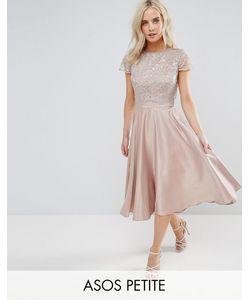 ASOS PETITE | Приталенное Платье Миди С Кружевным Кроп-Топом Металлик