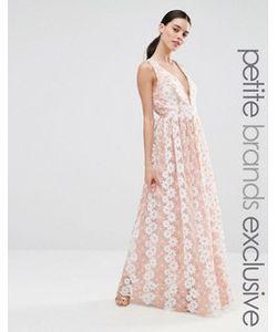 True Decadence Petite | Платье Макси С Цветочным Кружевом Premium