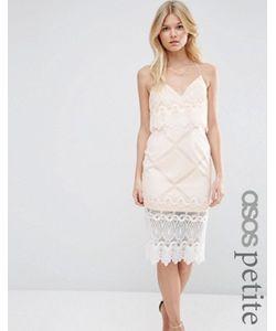 ASOS PETITE | Платье-Футляр С Укороченным Лифом И Кружевом С Фигурным Краем