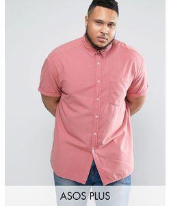 Asos | Свободная Оксфордская Рубашка Розового Цвета Plus