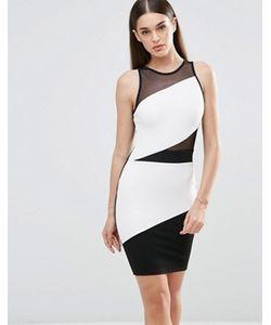 Sistaglam | Облегающее Платье В Стиле Колор Блок С Сеточкой