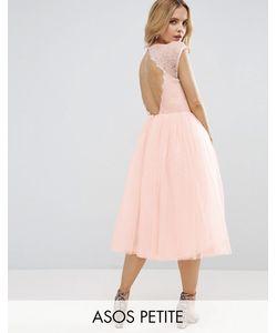 ASOS PETITE | Платье Миди Для Выпускного Premium