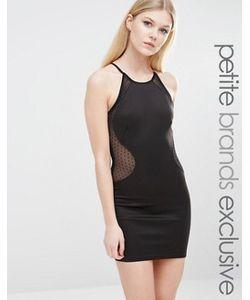 TFNC Petite | Платье-Футляр С Высокой Горловиной И Сеточкой В Горошек