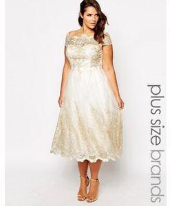 Chi Chi Plus | Кружевное Платье Для Выпускного С Короткими Рукавами Chi Chi London Premium