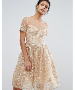 Chi Chi London | Золотистое Кружевное Платье Миди Для Выпускного Premium