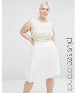 Lovedrobe | Короткое Приталенное Платье С Кружевной Вставкой Plus