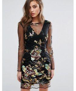 Miss Selfridge | Платье Мини С Вышивкой И Пайетками На Сетчатой Отделке