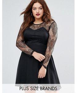 Boohoo Plus | Короткое Приталенное Платье С Кружевной Отделкой