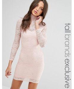 TFNC Tall | Платье-Футляр Из Прозрачного Кружева