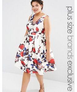 Chi Chi Plus | Платье Для Выпускного С Цветочным Принтом Chi Chi London Plus