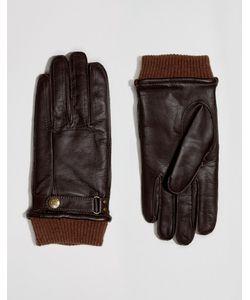 DENTS | Кожаные Перчатки Penrith