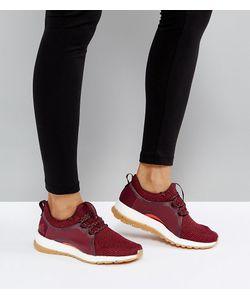 Adidas   Бордовые Кроссовки Training Pureboost X