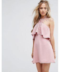 Foxiedox | Приталенное Платье С Кружевом И Завязкой На Шее