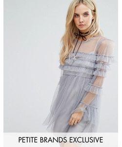Glamorous Petite | Платье Мини Из Тюля С Оборками