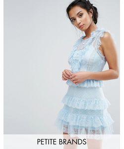 True Decadence Petite | Платье С Оборками Из Сетки С Цветочным Узором И В Горошек